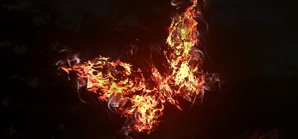 buttetfly effect scanteia revolutiei
